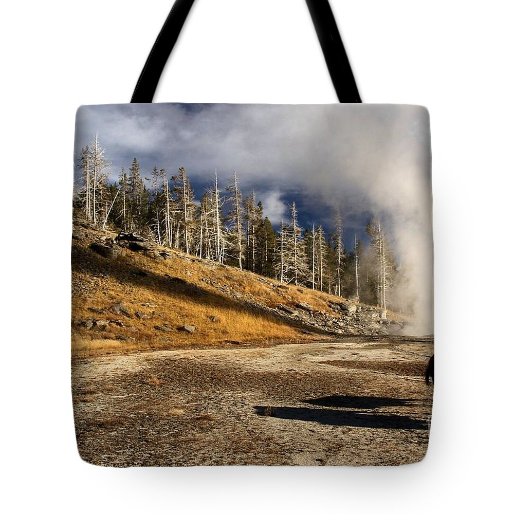 Yellowstone National Park Tote Bag featuring the photograph Leaving The Show by Adam Jewell