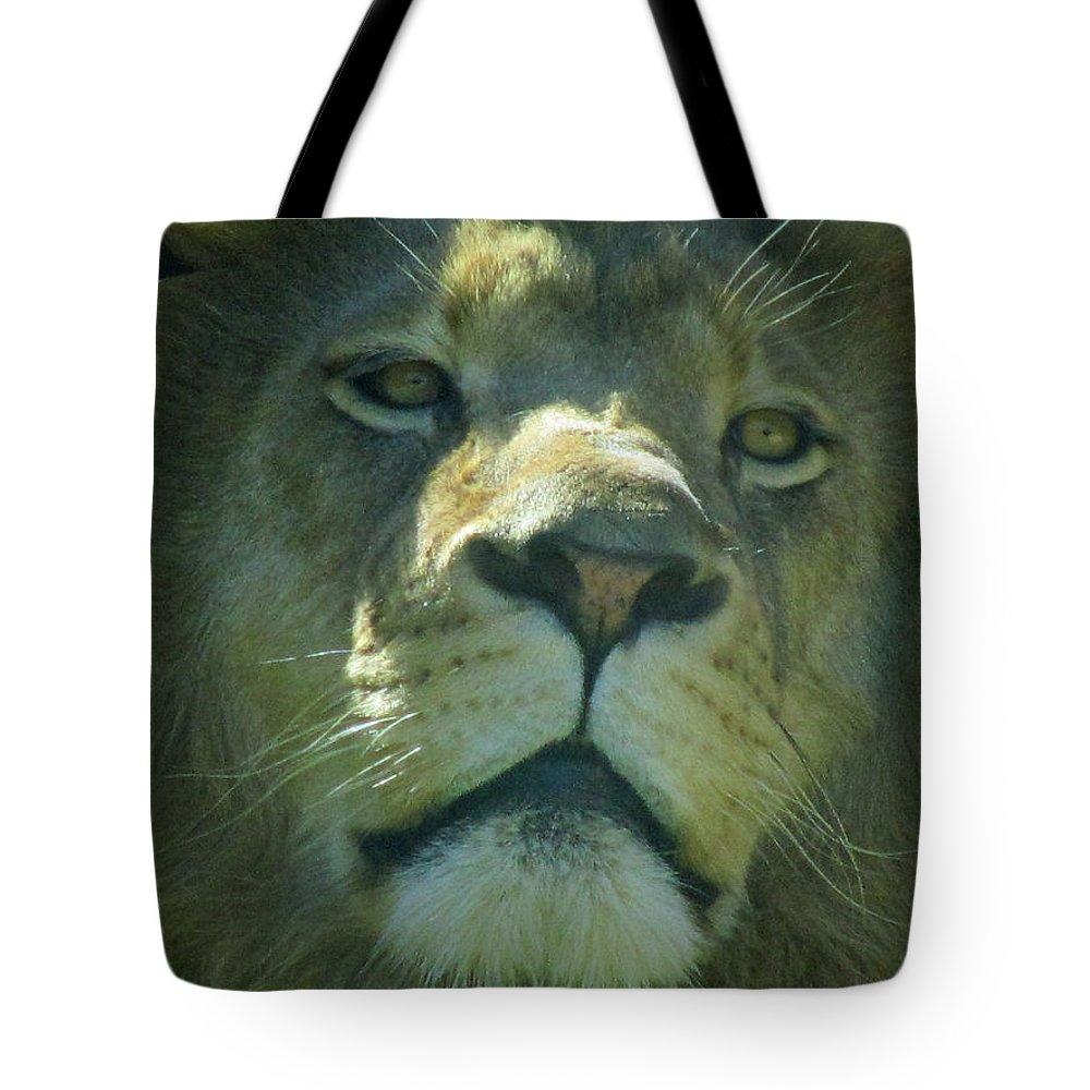 Lion Tote Bag featuring the photograph Leo,lion by Sandra Reeves