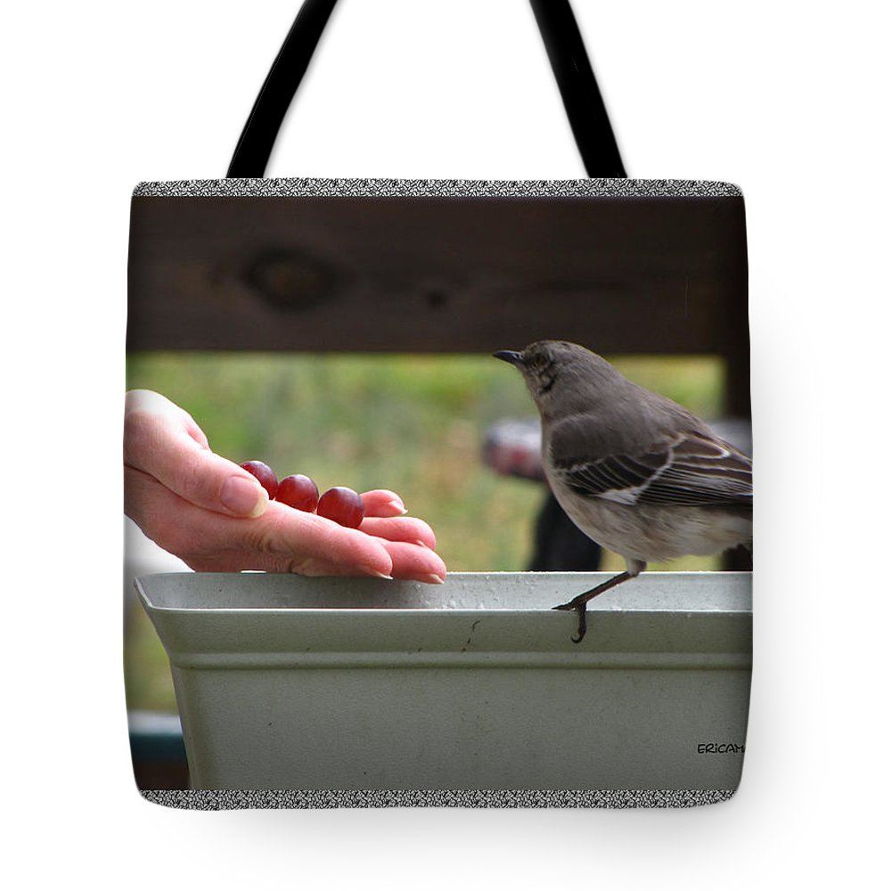 Bird Tote Bag featuring the photograph Lets Eat by Ericamaxine Price