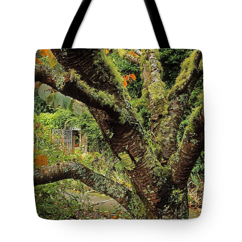 Architectural Detail Tote Bag featuring the photograph Lichen Covered Apple Tree, Walled by The Irish Image Collection