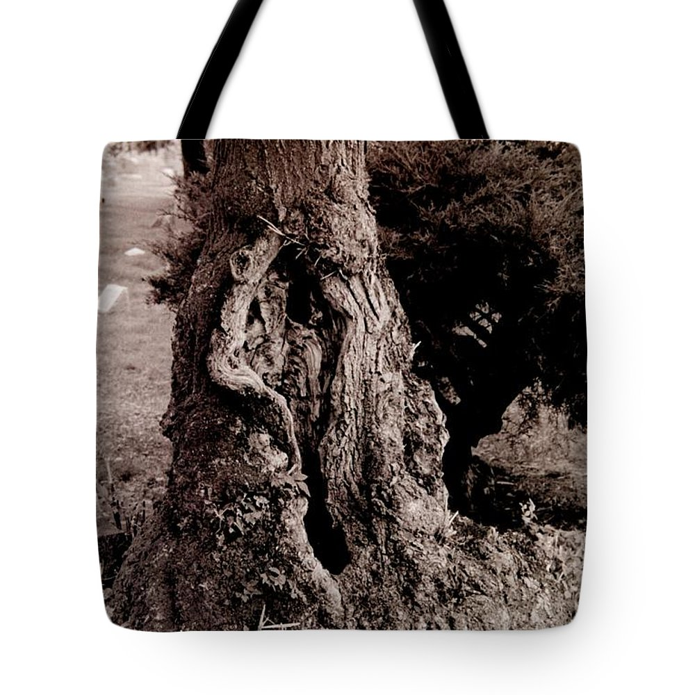 Cemetery Tote Bag featuring the photograph Life And Death by T Campbell