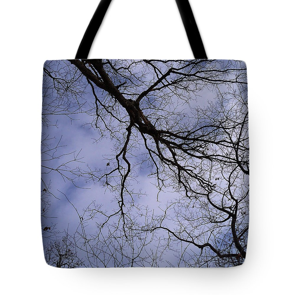 Trees Tote Bag featuring the photograph Lightening Branches by Corinne Elizabeth Cowherd