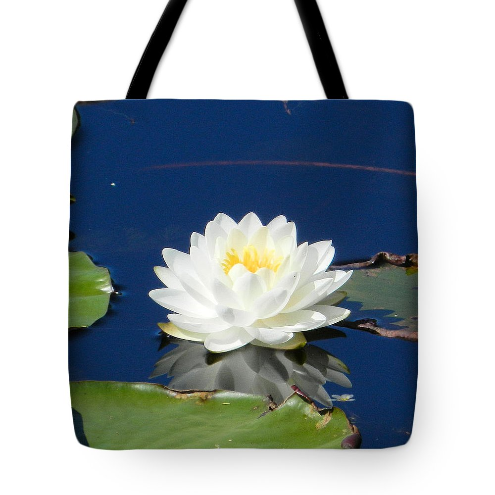 Water Lily Tote Bag featuring the photograph Lily Dreams by Jennifer Stockman