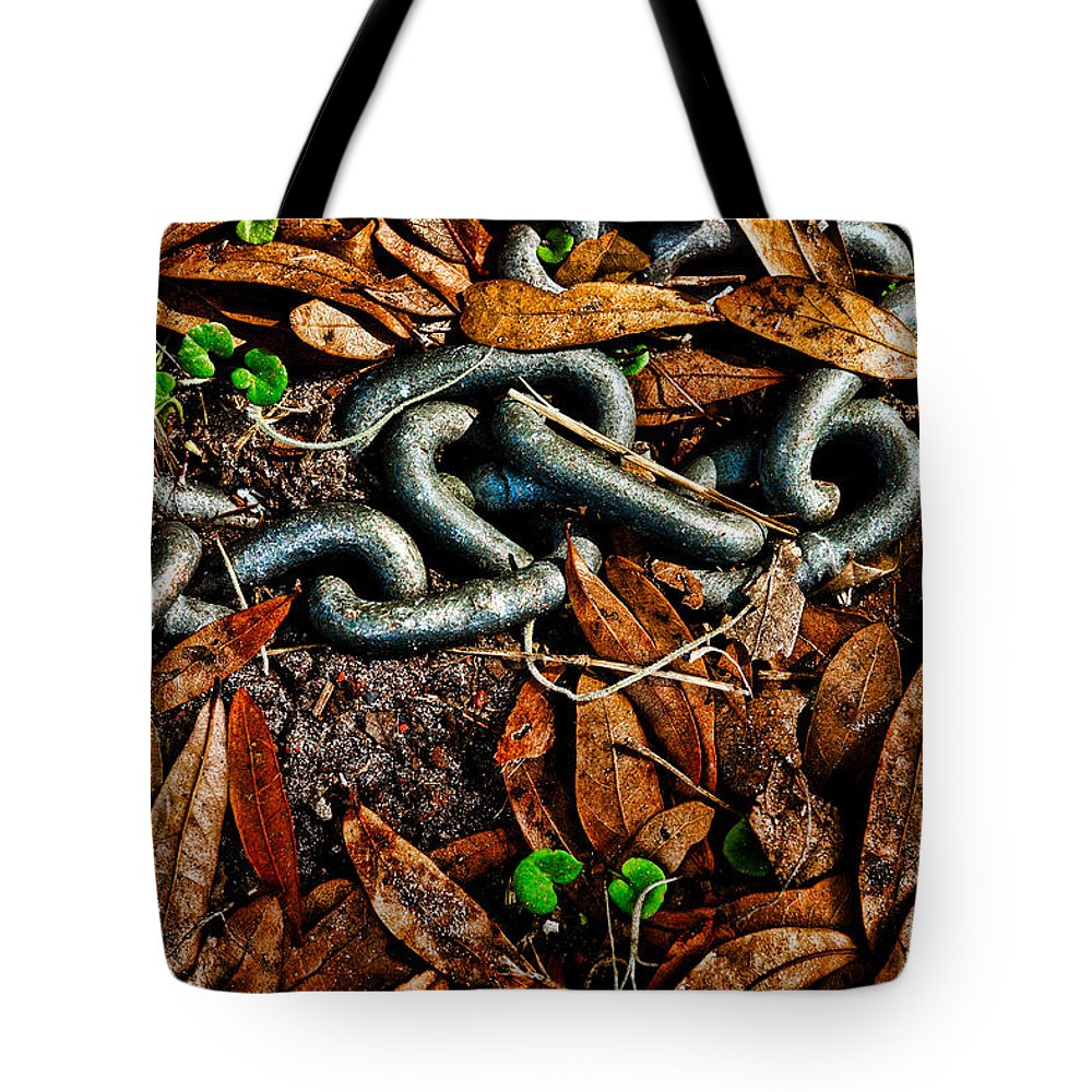 Cahin Tote Bag featuring the photograph Links And Leaves by Christopher Holmes