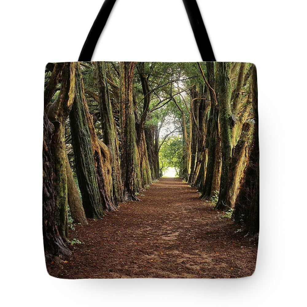 County Waterford Tote Bag featuring the photograph Lismore, County Waterford, Ireland by The Irish Image Collection
