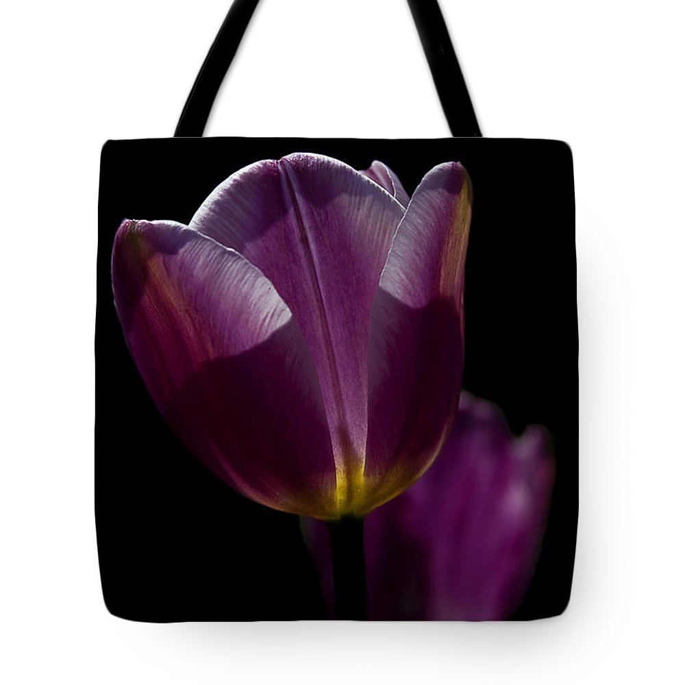 Lit From Within Tote Bag featuring the photograph Lit From Within by Wes and Dotty Weber