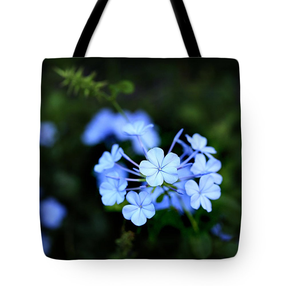 Little blue hawaiian flower tote bag for sale by marilyn hunt little tote bag featuring the photograph little blue hawaiian flower by marilyn hunt izmirmasajfo