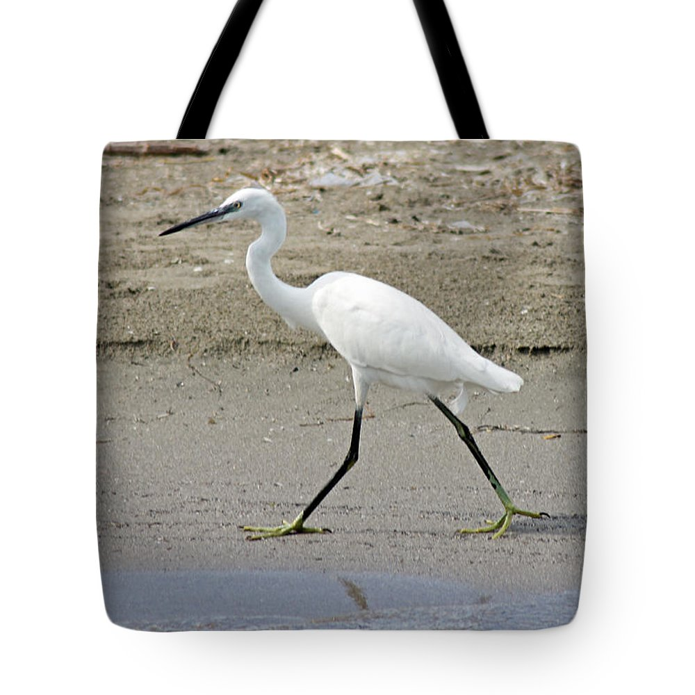 Egret Tote Bag featuring the photograph Little Egret by Tony Murtagh