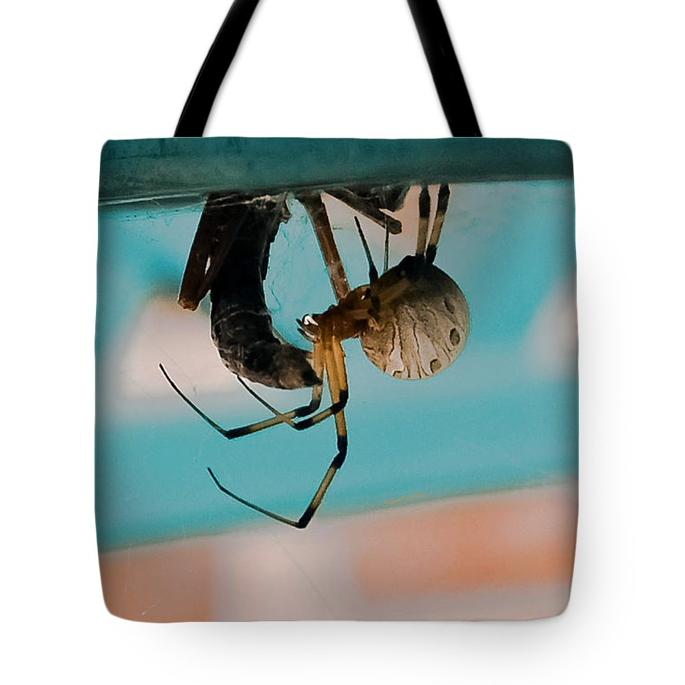 Spider Tote Bag featuring the photograph Little Miss Venom by DigiArt Diaries by Vicky B Fuller