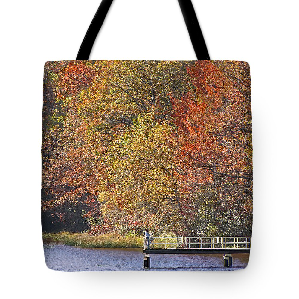 Locust Lake Tote Bag featuring the photograph Locust Lake State Park 2968 by David Dehner