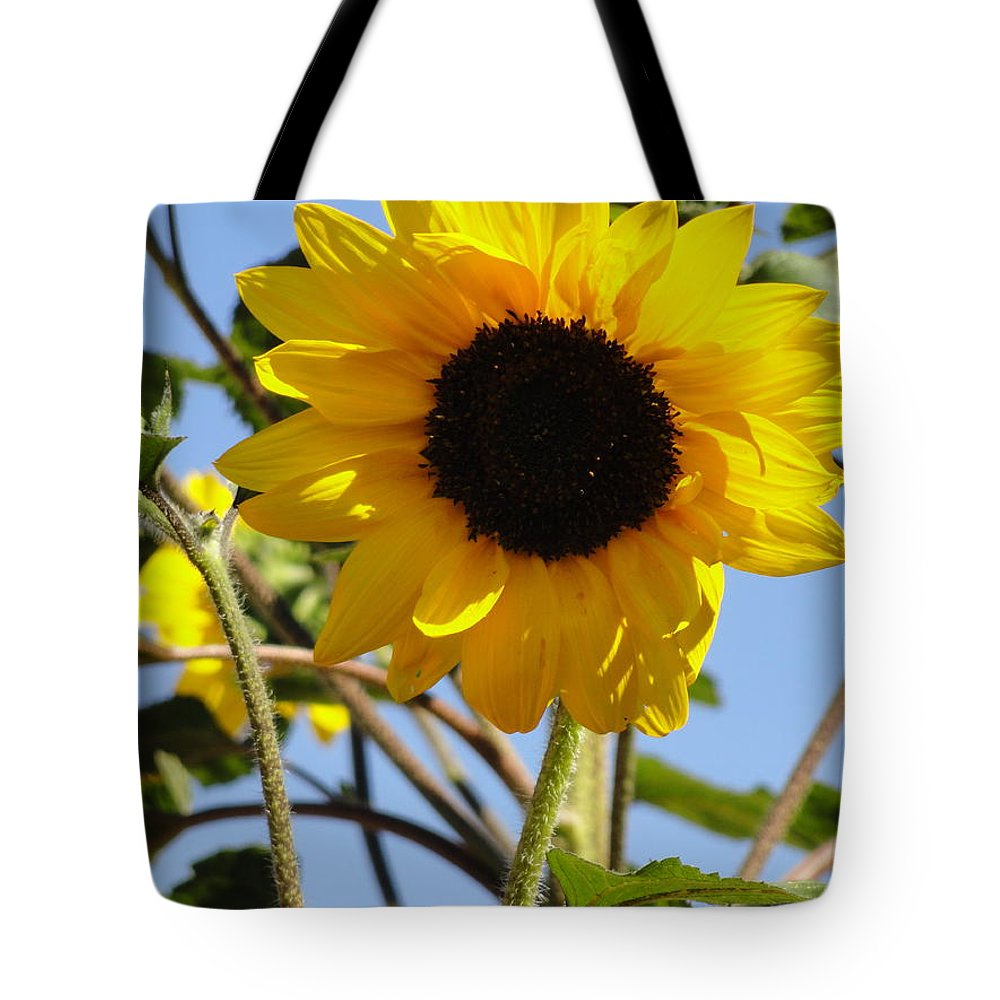 Sunflower Tote Bag featuring the photograph Lone Quicksilver by Shannon Grissom