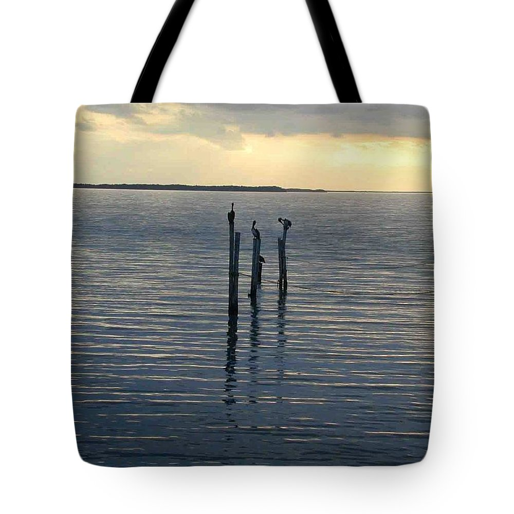 Lonesome Tote Bag featuring the photograph Lonesome Sea by Douglas Barnett