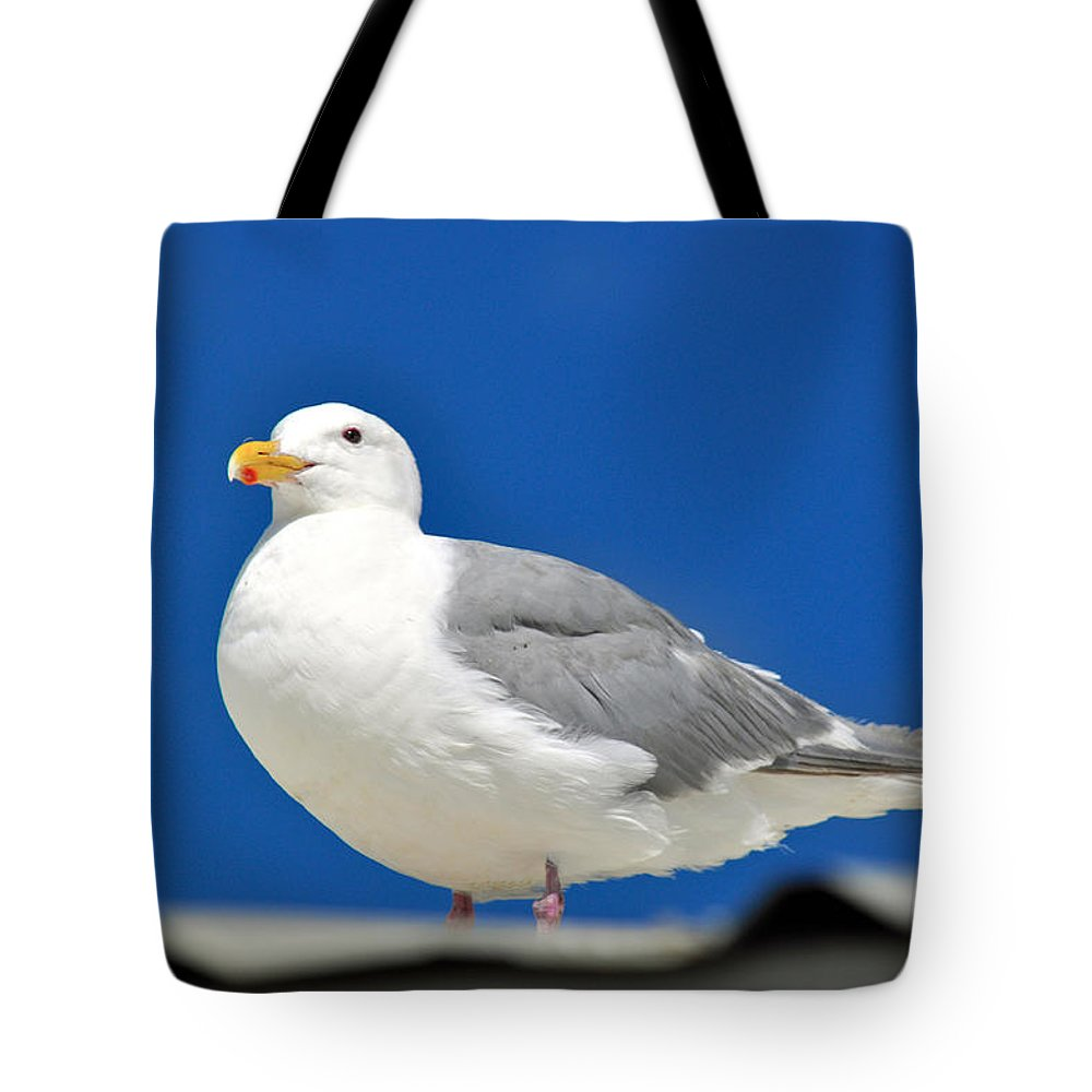 Seagulls Tote Bag featuring the photograph Look Out by Debra Miller