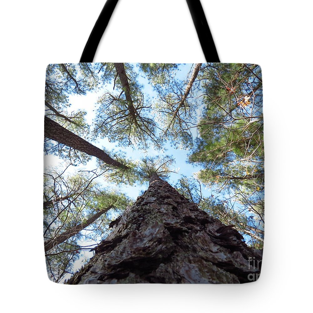 Trees Tote Bag featuring the photograph Looking up by Rrrose Pix