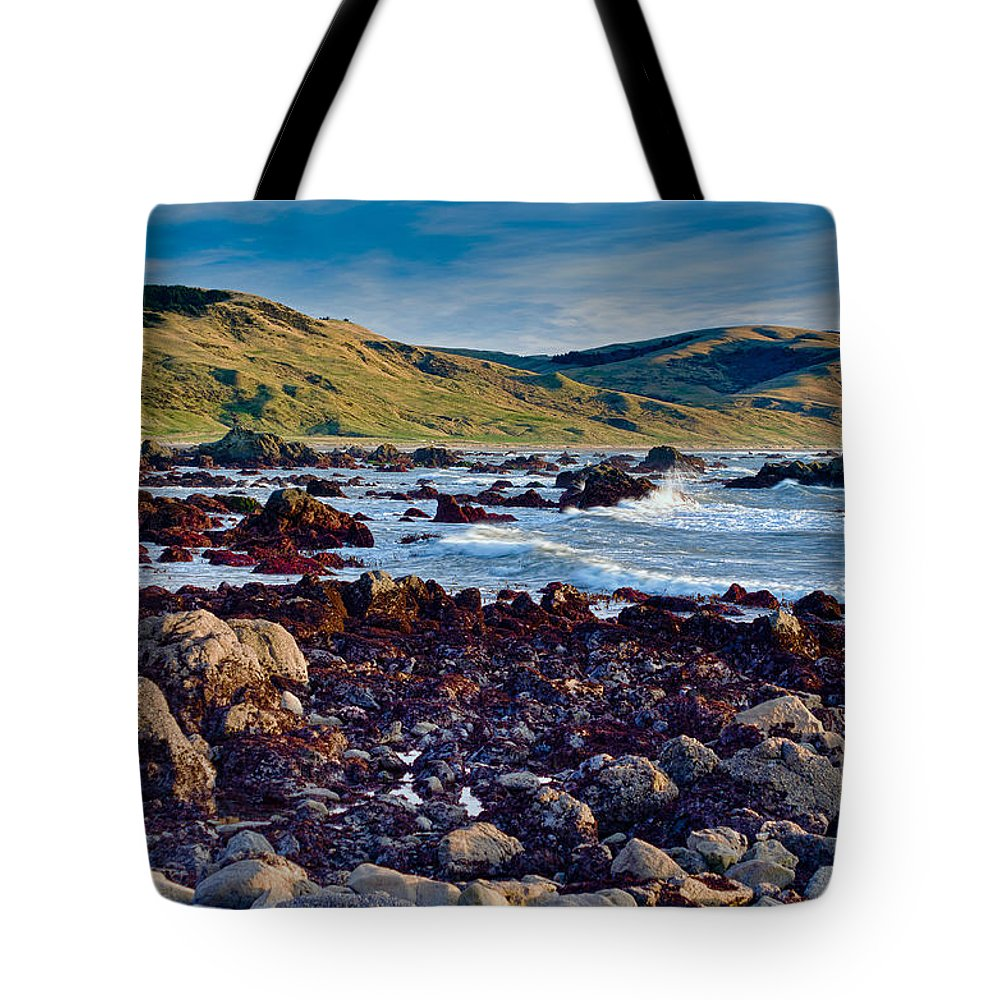 Lost Coast Tote Bag featuring the photograph Lost Coast In Winter by Greg Nyquist