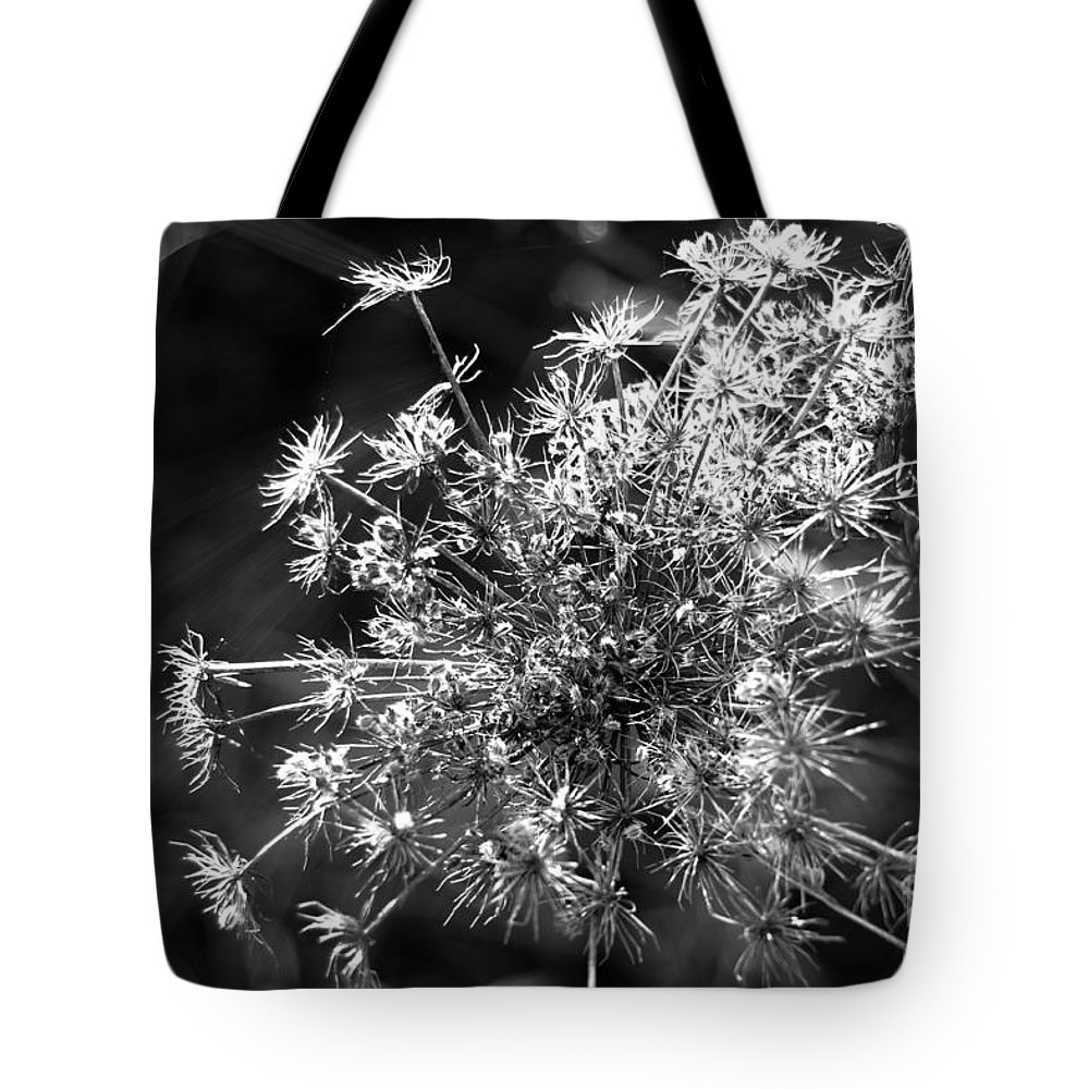 Anethum Graveolens Tote Bag featuring the photograph Lost In Space by Dariusz Gudowicz