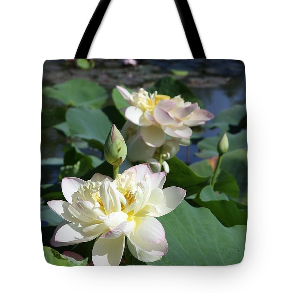 Lotus Tote Bag featuring the photograph Lotus in Bright Sunlight by John Lautermilch