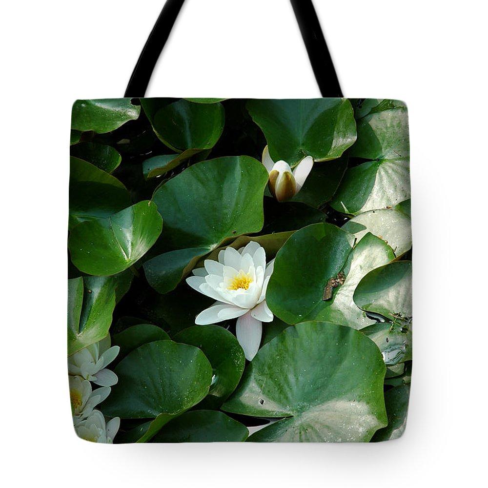 Usa Tote Bag featuring the photograph Lotus by LeeAnn McLaneGoetz McLaneGoetzStudioLLCcom
