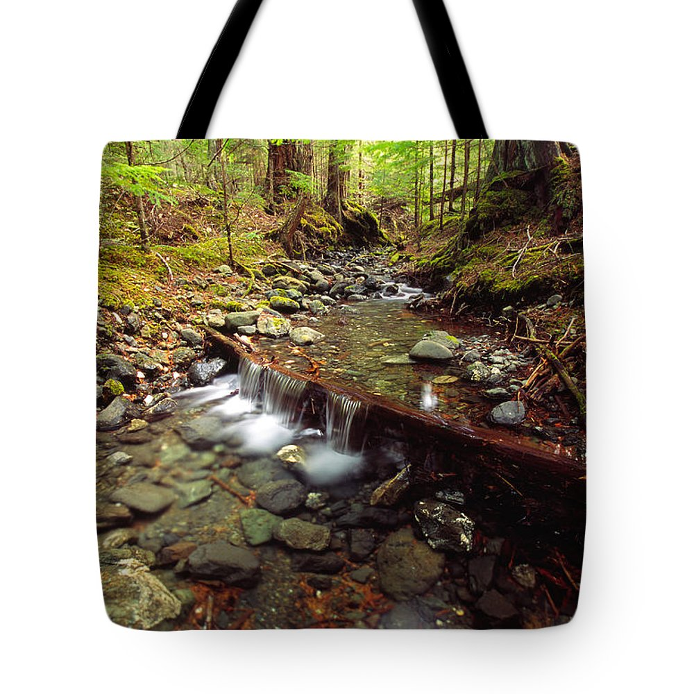 Light Tote Bag featuring the photograph Lupin Creek, Strathcona Provincial by Robert Postma