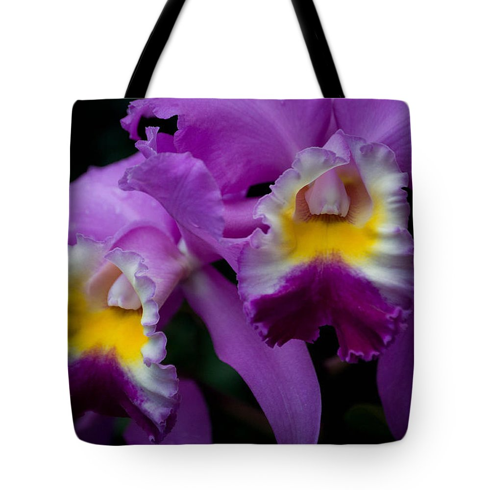 Flower Tote Bag featuring the photograph Maddie's Orchid by Trish Tritz