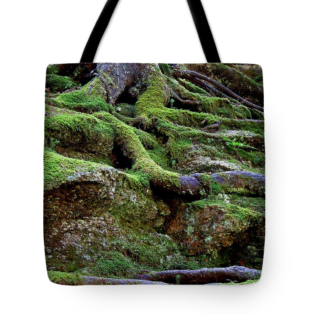 Roots Tote Bag featuring the photograph Magical Roots At Sabbath Day by Nancy Griswold