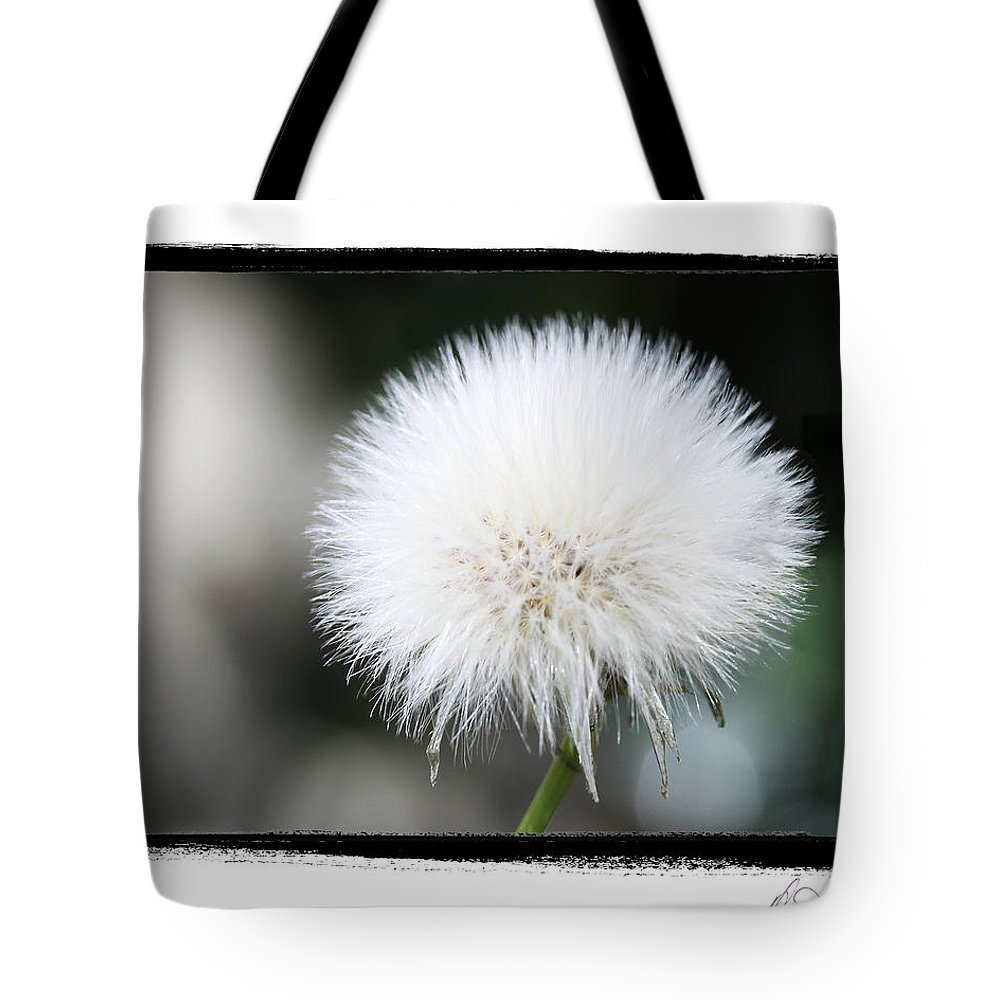 Wish Tote Bag featuring the photograph Make A Wish by Diana Haronis