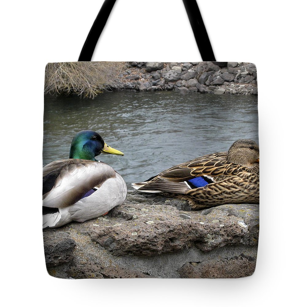 Ducks Tote Bag featuring the photograph Mallard Duck Couple by Daniel Hagerman