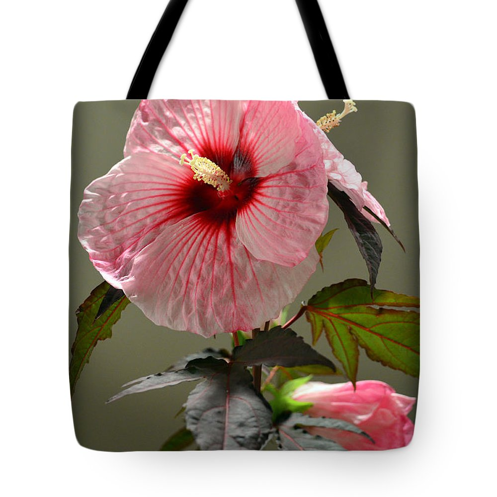 Mallow Tote Bag featuring the photograph Mallow Hibiscus by Sandi OReilly