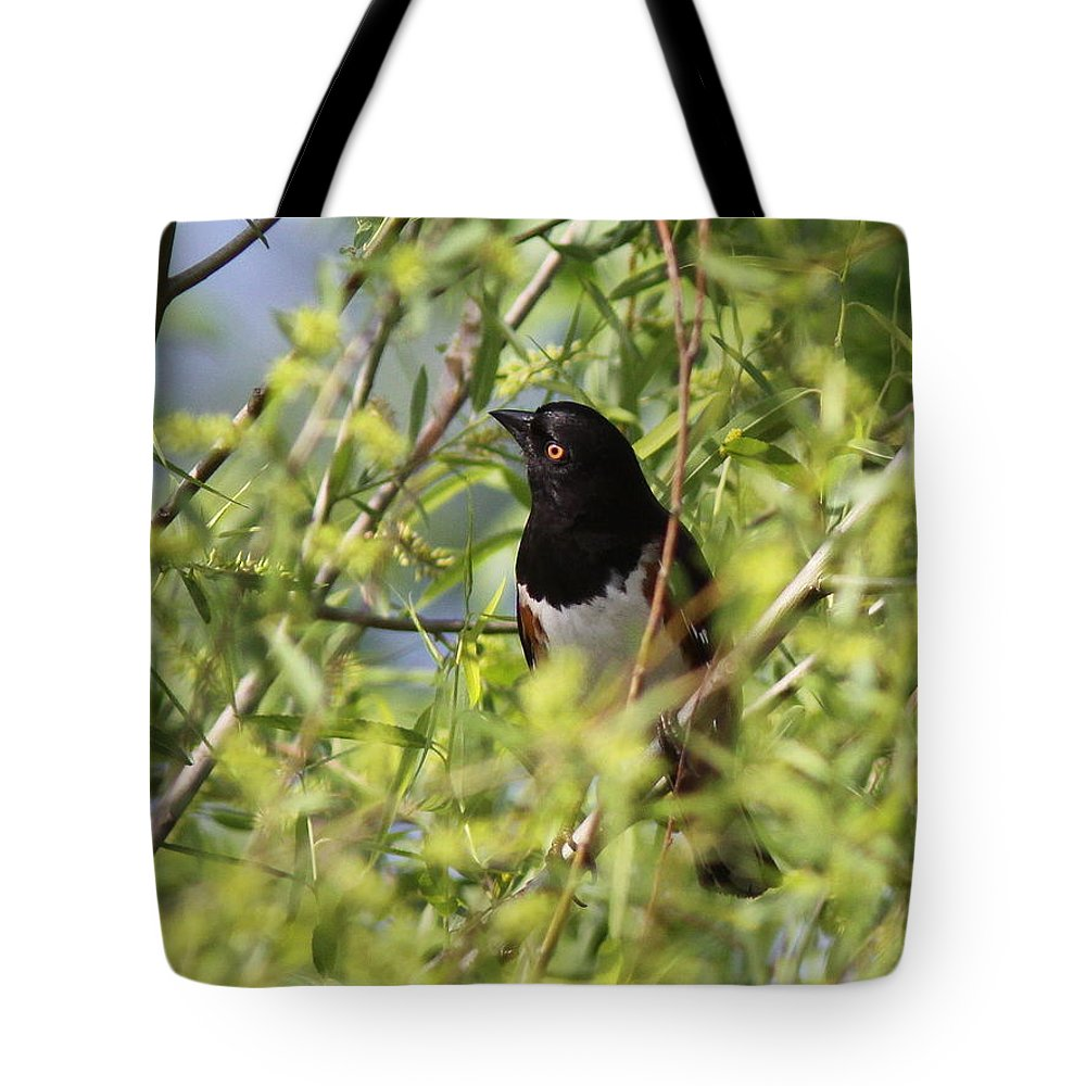 Towhee Tote Bag featuring the photograph Man Of The Willows by Travis Truelove