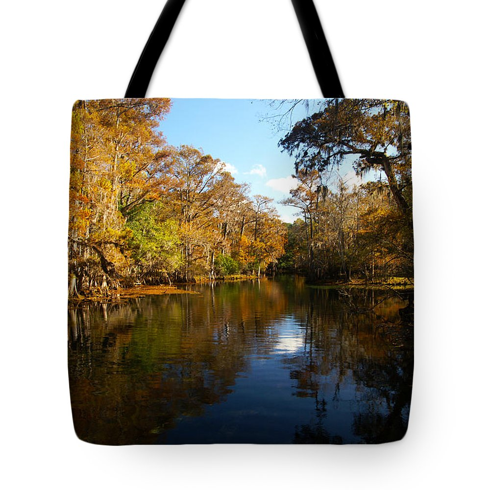 Manatee Springs Tote Bag featuring the photograph Manatee Springs by Tim Litwiller