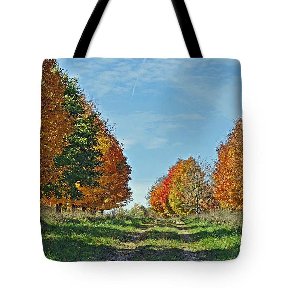 Autumn Tote Bag featuring the photograph Maple Tree Lane by Rodney Campbell