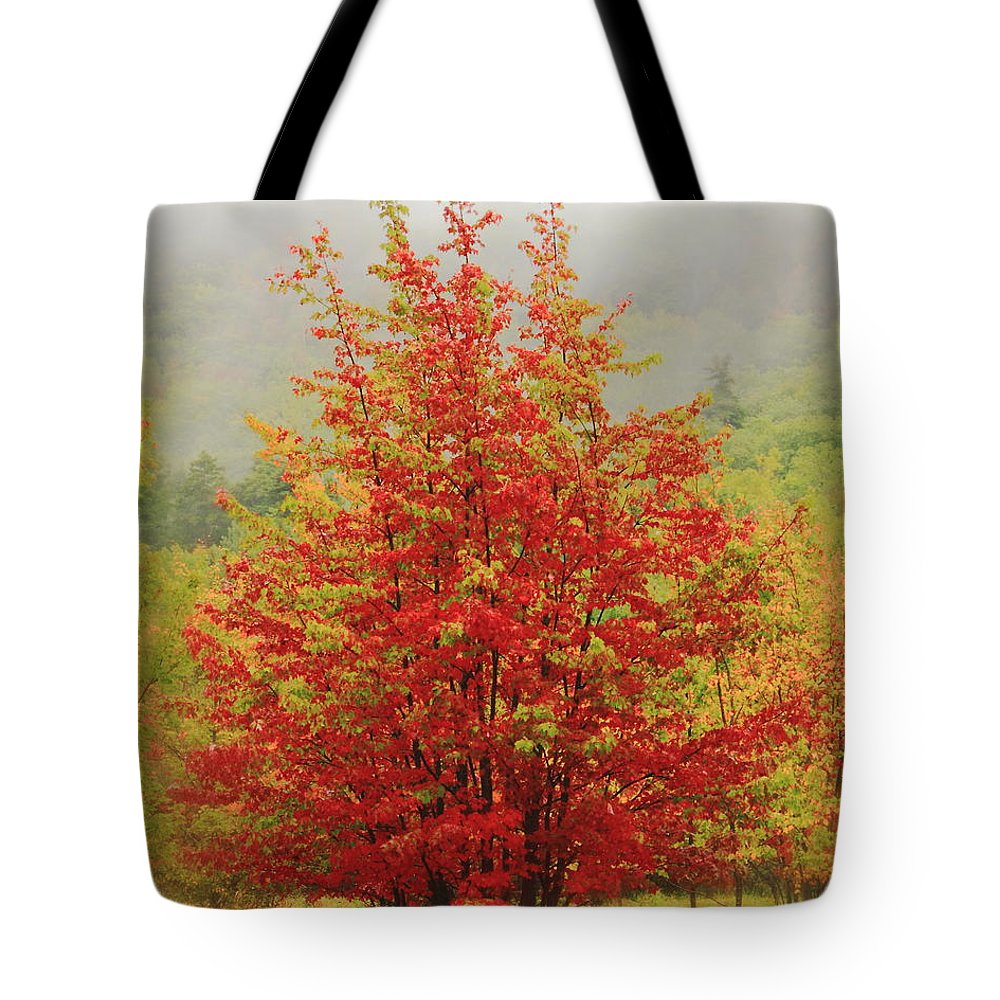 Maples Tote Bag featuring the photograph Maples In The Mist by Roupen Baker