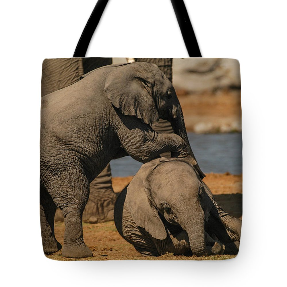 Focussed Tote Bag featuring the photograph Me And You by Alistair Lyne