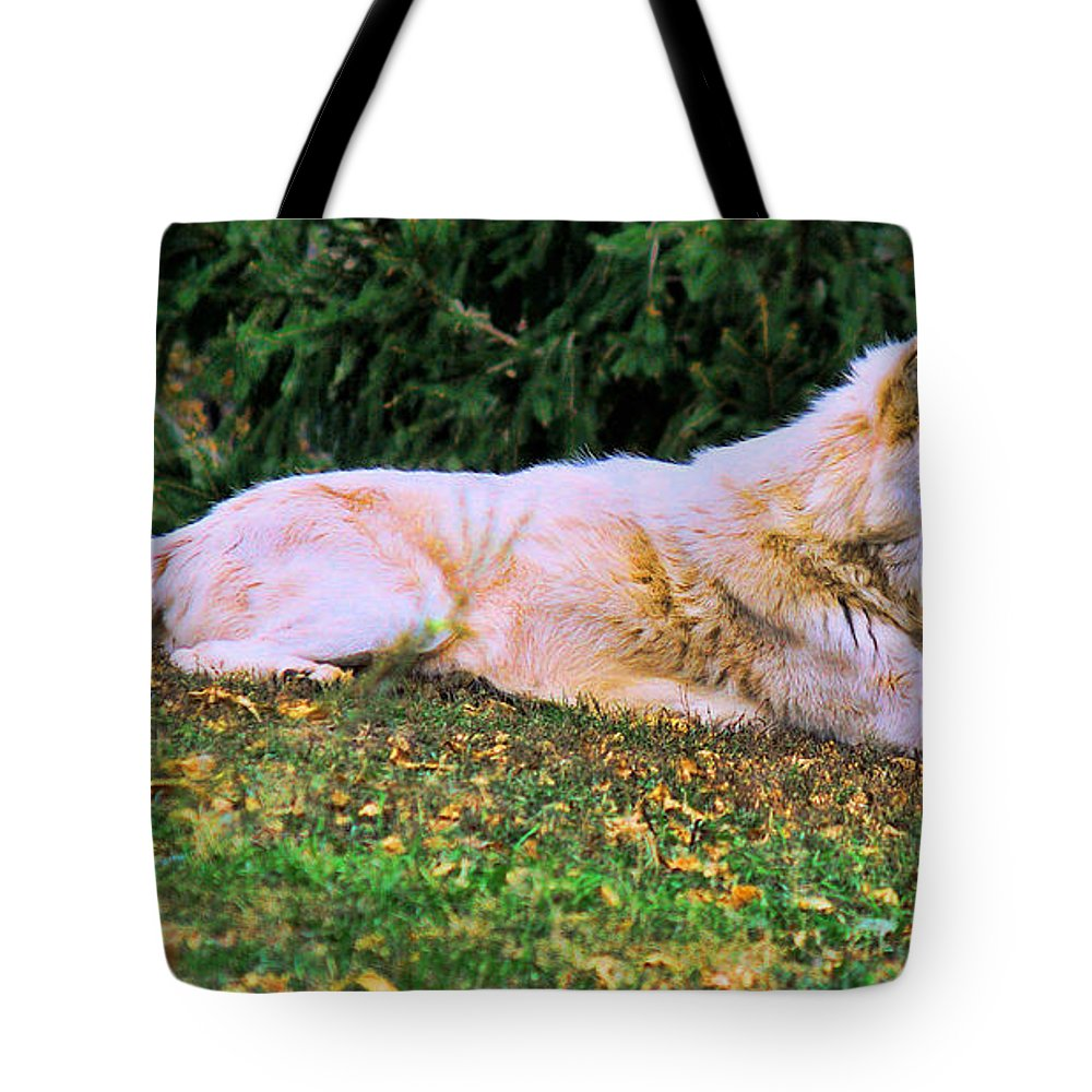 Menominie Park Tote Bag featuring the photograph Menominie Park Grey Wolf by Tommy Anderson