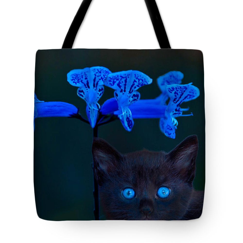 Midnight Blue Tote Bag featuring the photograph Midnight Blue by Randall Branham