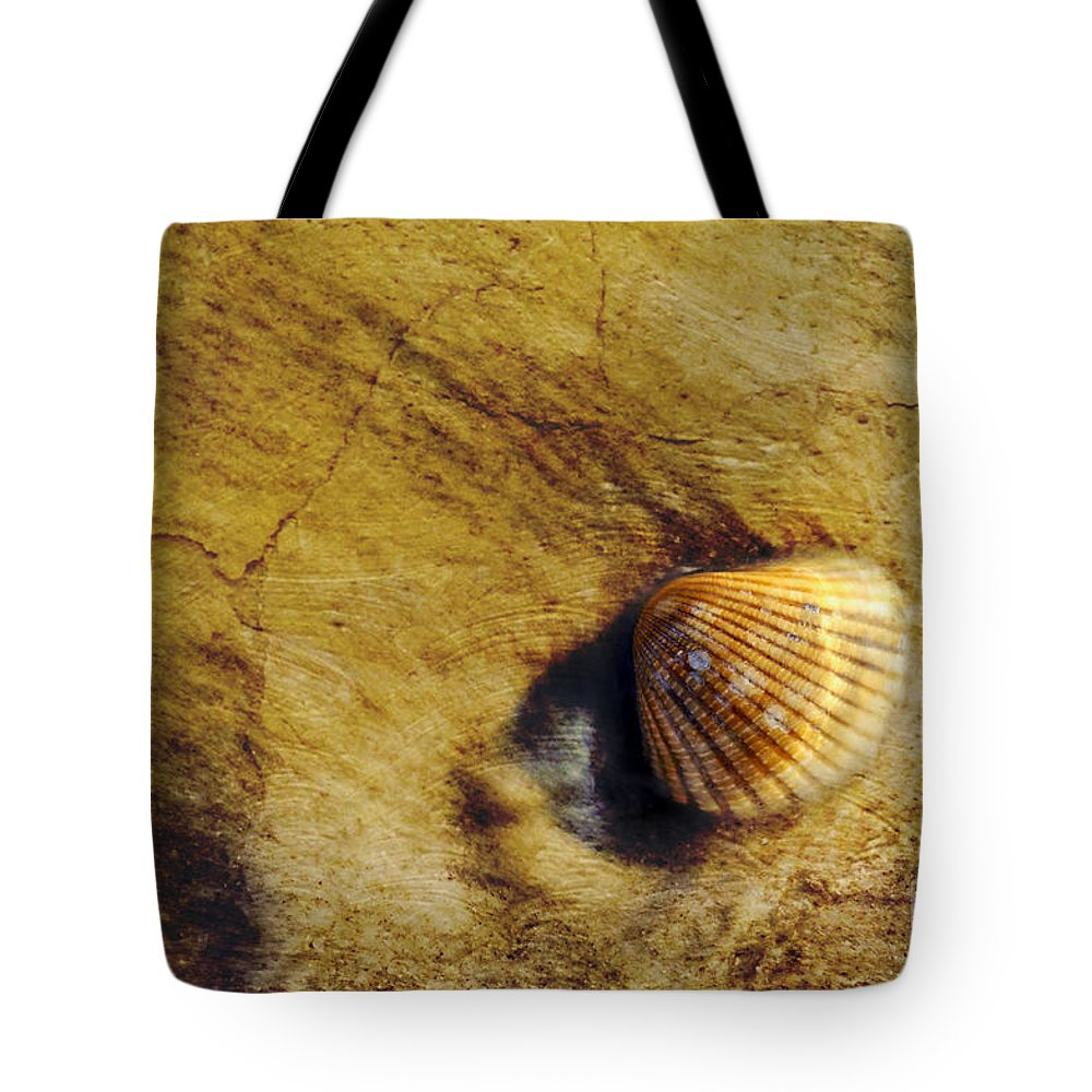 Texture Tote Bag featuring the photograph Millennia - D006841-a by Daniel Dempster