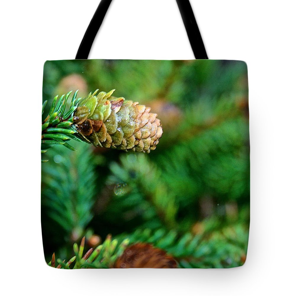 Miniature Pine Tree Tote Bag featuring the photograph Mini Cone by Susan Herber