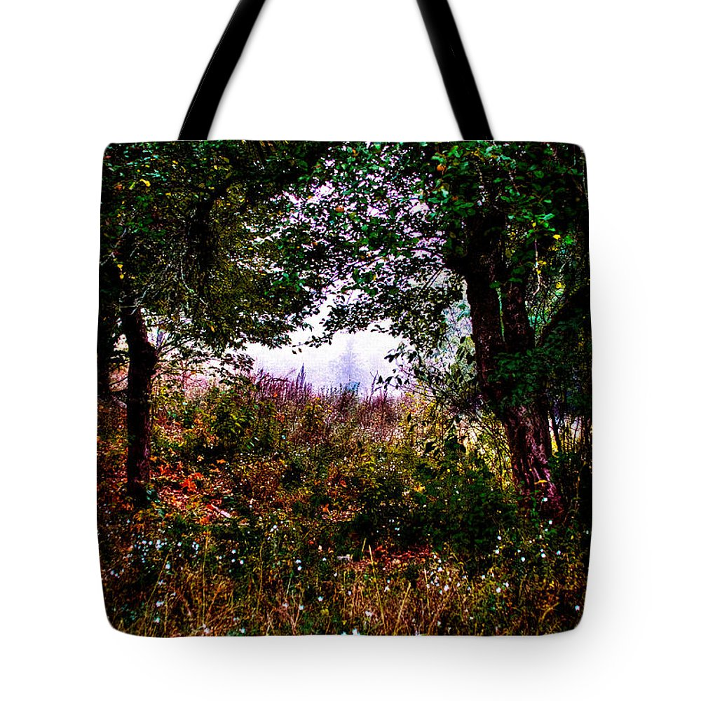 Leaves Tote Bag featuring the photograph Mist Beyond The Apple Trees by David Patterson