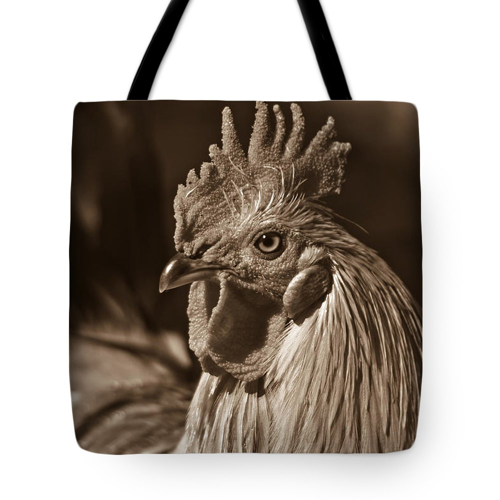 Mister Tote Bag featuring the photograph Mister Rooster From The Barnyard by Douglas Barnett