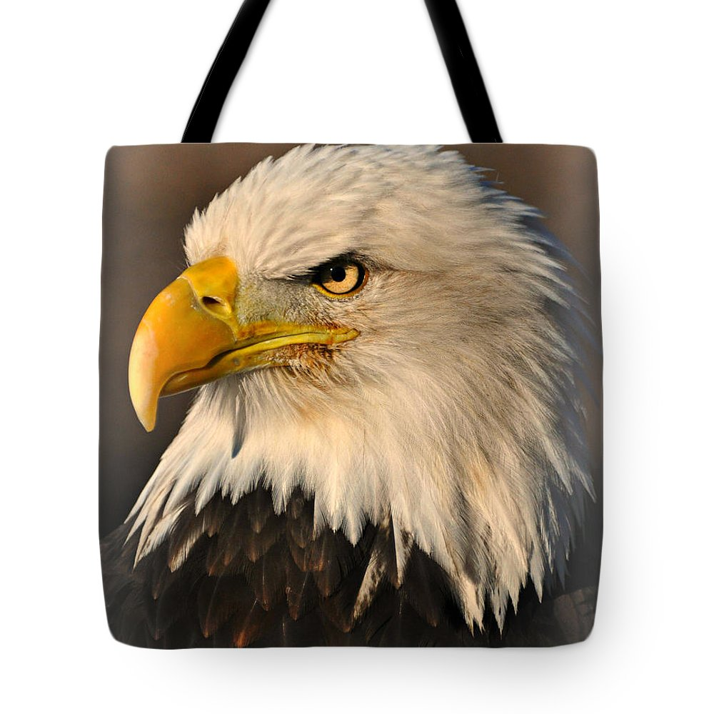 Eagle Tote Bag featuring the photograph Misty Eagle by Marty Koch