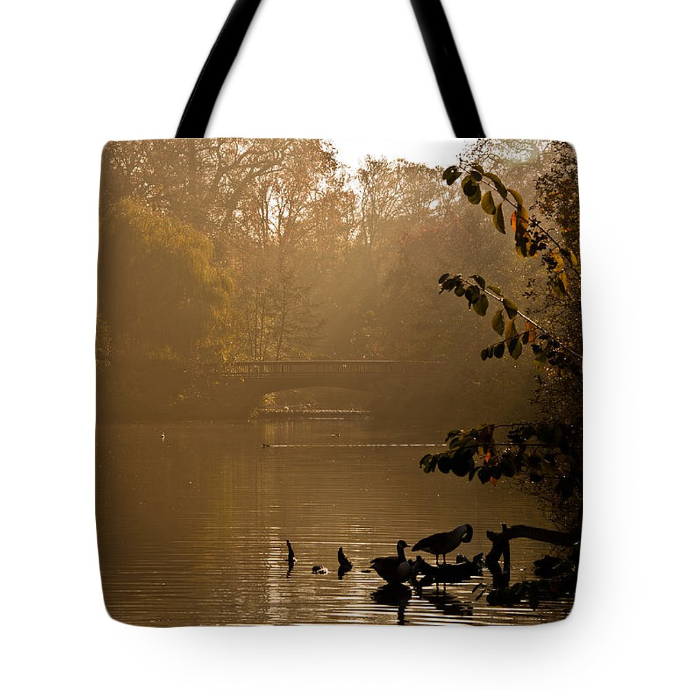 Sunlight Tote Bag featuring the photograph Misty Lake by Dawn OConnor