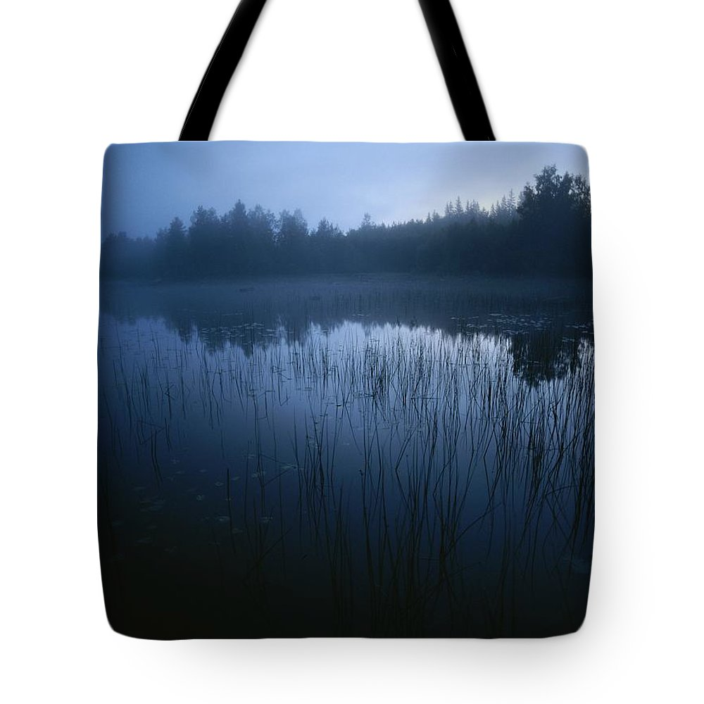 Europe Tote Bag featuring the photograph Misty View Of Taiga Forest by Mattias Klum