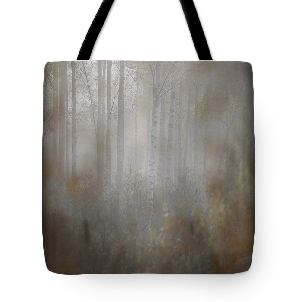 Europe Tote Bag featuring the photograph Misty Woods In Autumn by Mattias Klum