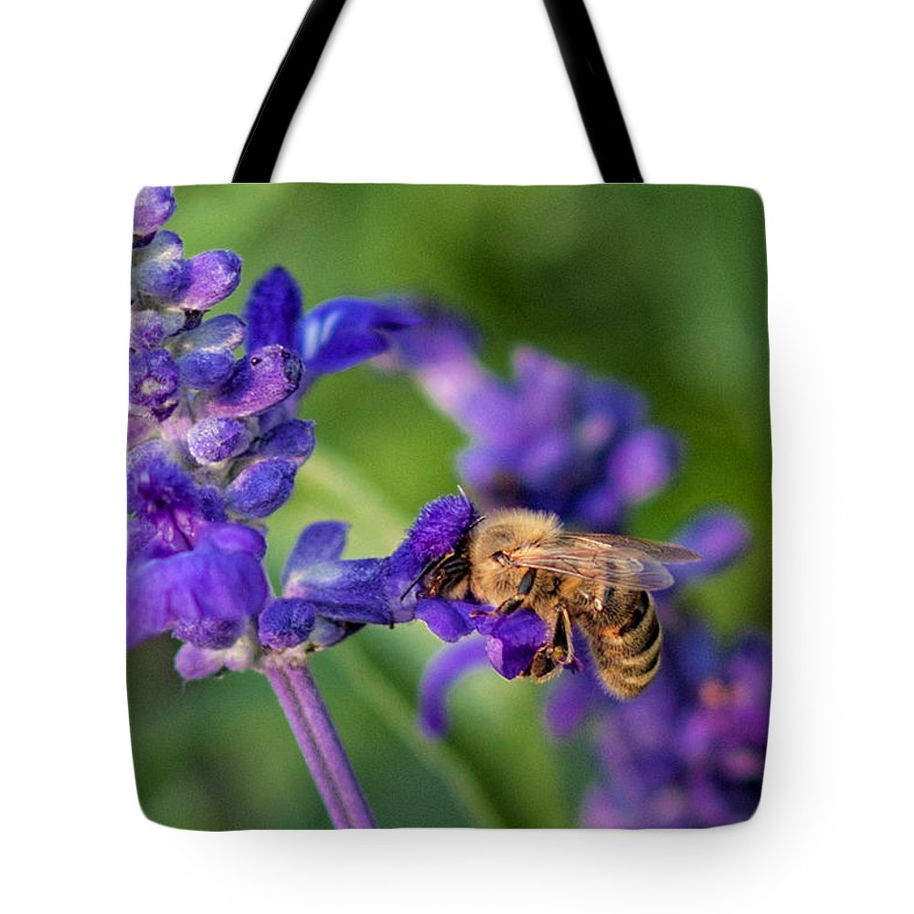 Bee Honey Flower Purple Green Wildlife Rochester Minnesota Bugs Insects Nature Floral Tote Bag featuring the photograph Mmmm Honey by Tom Gort