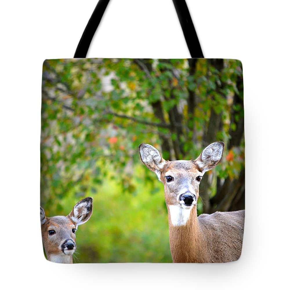 Landscape Tote Bag featuring the photograph Mom And Baby Deer by Peggy Franz