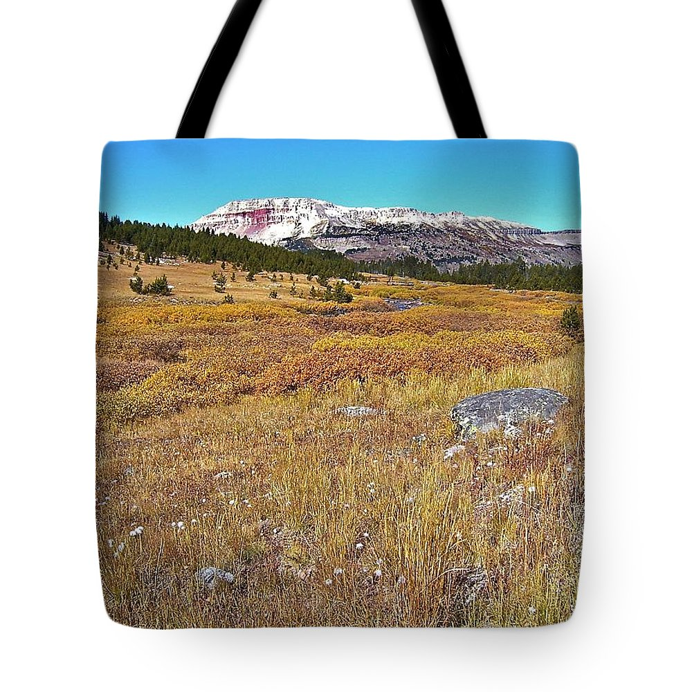 Montana Tote Bag featuring the photograph Montana100 0885 by Michael Peychich