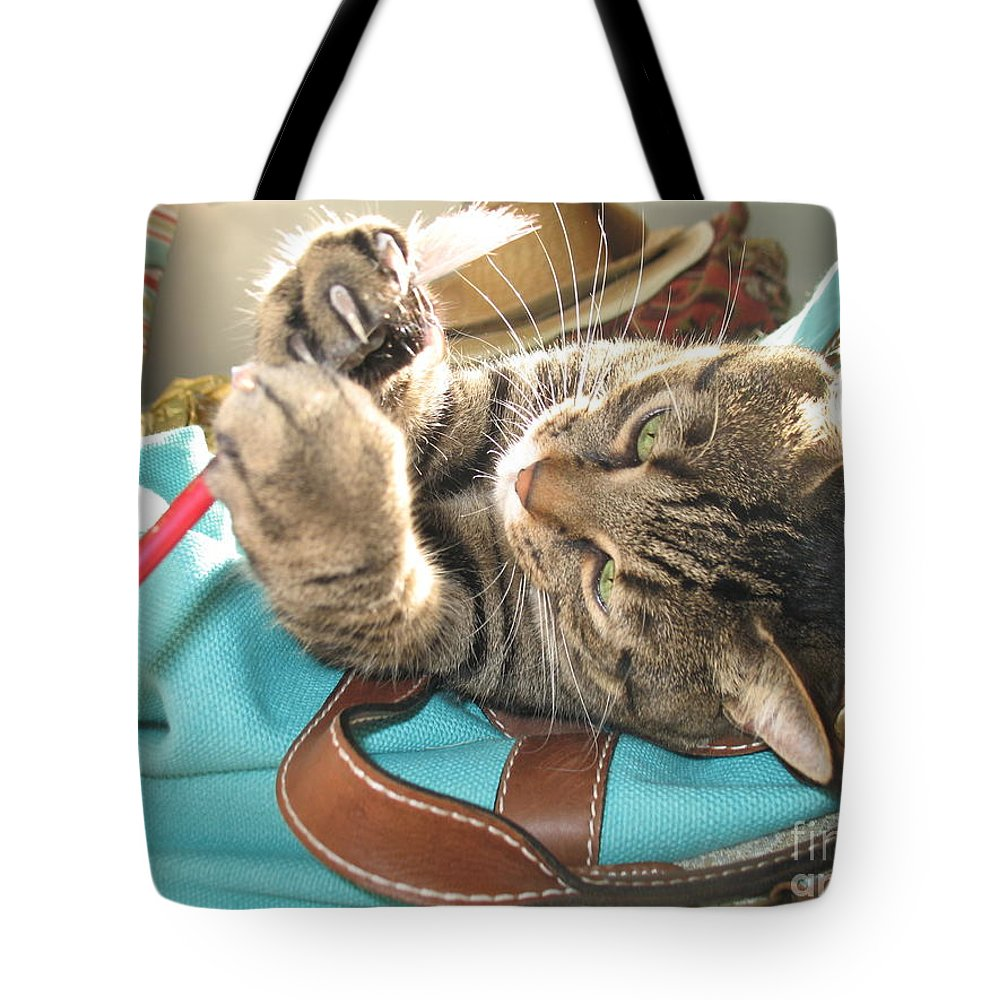 Cat Tote Bag featuring the photograph Monty Holding Paintbrush .. by Jolanta Anna Karolska