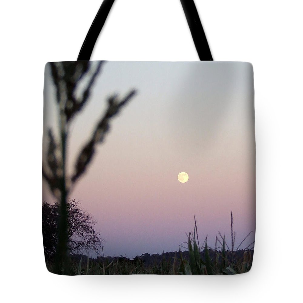 Moon Tote Bag featuring the photograph Moon by Andrea Anderegg