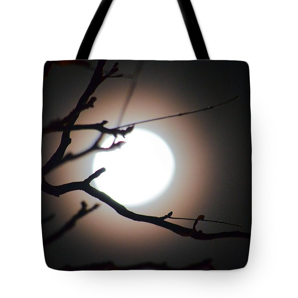 Moonlit Pink Tote Bag featuring the photograph Moonlit Pink by Maria Urso
