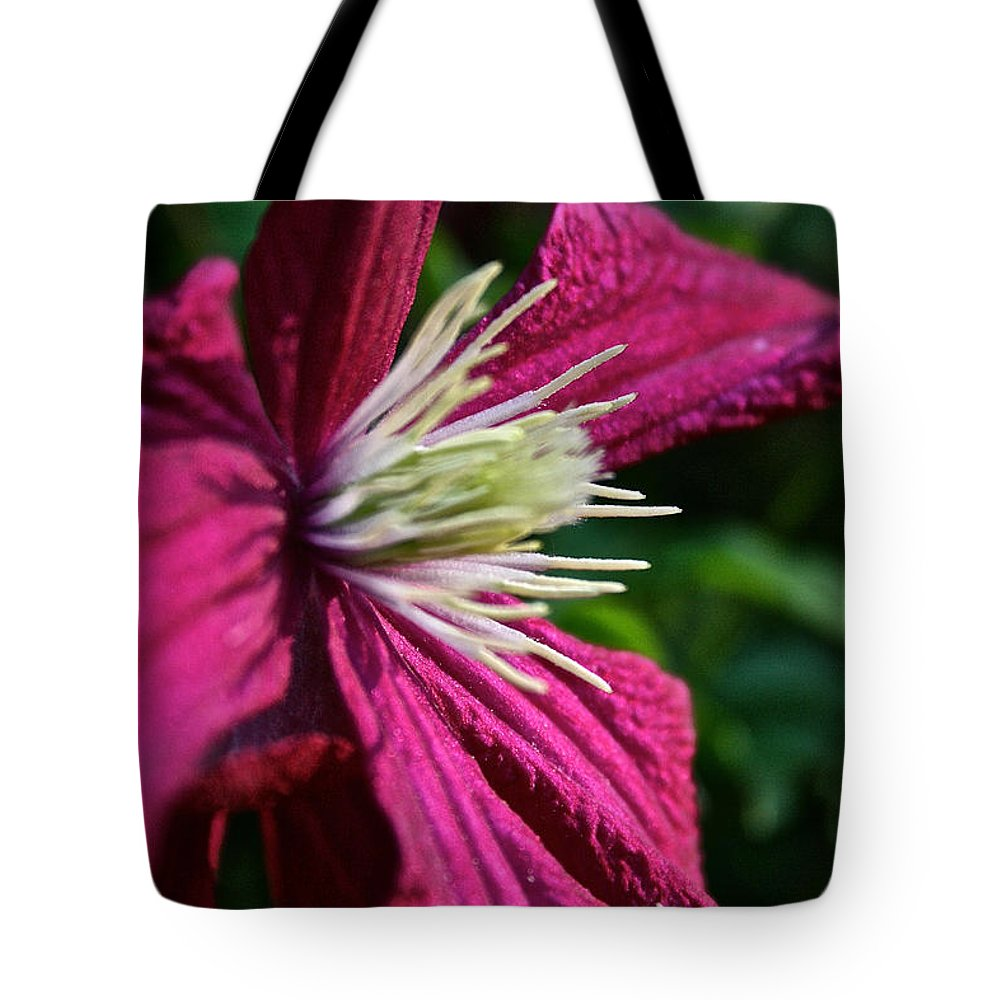 Outdoors Tote Bag featuring the photograph Morning Clematis by Susan Herber